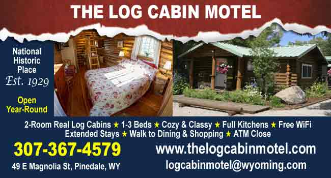 Log Cabin Motel