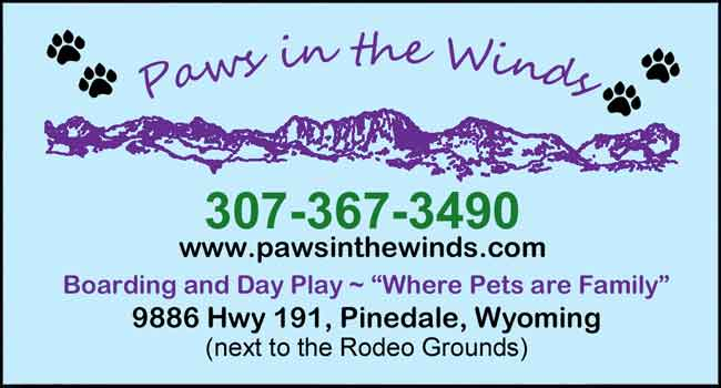 Paws in the Winds