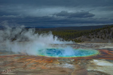 Grand Prismatic Spring. Photo by Dave Bell.