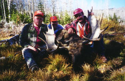 Hunters with a bull moose from the Wyoming Range area. Photo courtesy Triple Peak