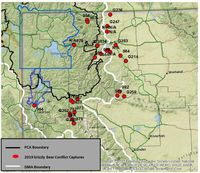 Grizzly bear management capture locations 2019